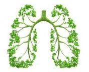 Growing oxygen